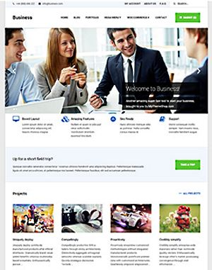 MyThemeShop WordPress Business Theme