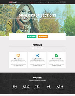 MyThemeShop One-Page WordPress Theme